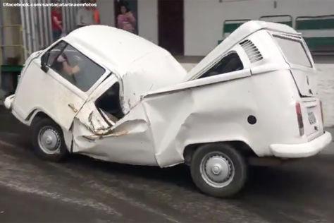 Feldhase überlebt Autounfall bei Tempo 100