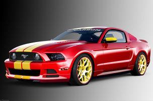 Focus auf den Mustang