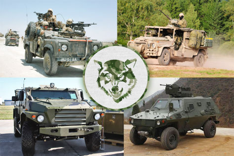 Wölfe: Militär