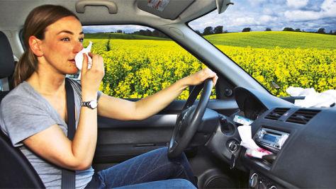 Tipps gegen Pollen im Auto