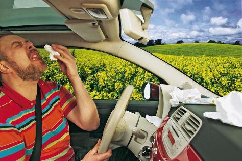 Pollenfilter: Die Produkte der Hersteller