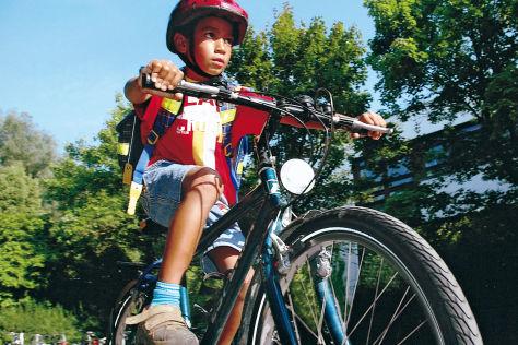 Ramsauer gegen Helmpflicht für Radfahrer