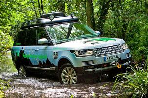 Range Rover wird grün