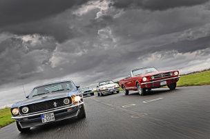 Pony Cars von mild bis wild