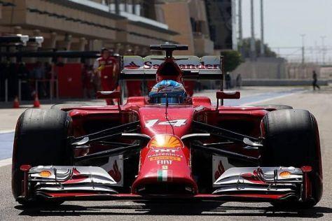 Fernando Alonso rechnet mit einem großen Gefälle zwischen Rennen und Qualifying