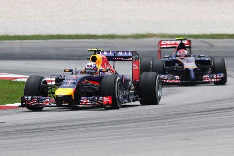 Red Bull & Toro Rosso