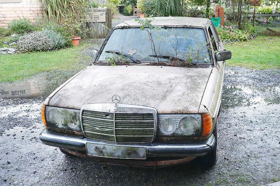Scheunenfund: Mercedes 300 D