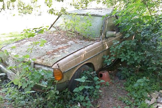 Scheunenfund VW T3
