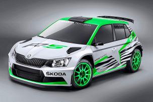 Skoda Fabia R5 Concept Car: Essen Motor Show 2014