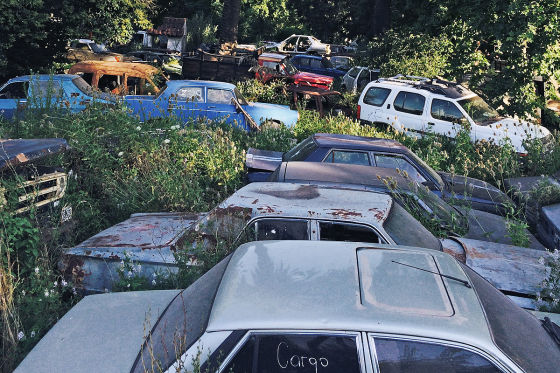 Palmen-Friedhof der Autoleichen