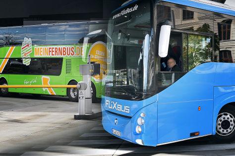 MeinFernbus und FlixBus an einem Busbahnhof