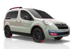 Citroëns Offroad-Kasten