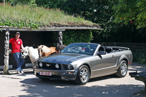 ford mustang gt cabrio gebrauchtwagen test. Black Bedroom Furniture Sets. Home Design Ideas