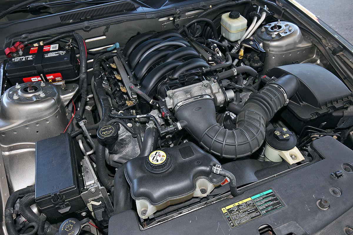 Ford Mustang GT Cabrio im Test - Bilder - autobild.de