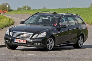 Gro�er Benz f�r Einsteiger