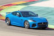 Jaguars neue Mieze