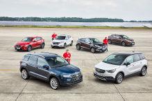 Sechs kleine SUVs im Vergleich