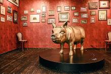 Stellplätze für Freunde schräger Museen