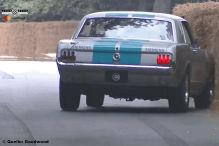 Autonomer Mustang frisst Heuballen