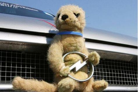 Opel Blitz-Hits 2007
