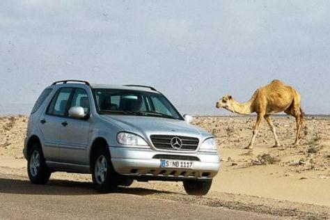 100.000-km-Dauertest Mercedes ML 270 CDI