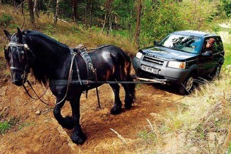 Land Rover Freelander (ab 1998)