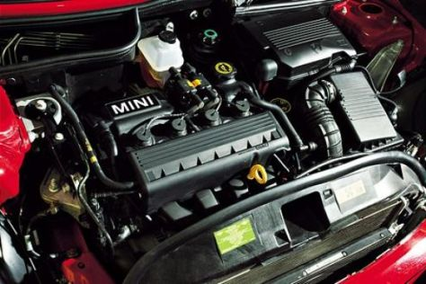 Dauertest Kelleners Sport Mini (1)