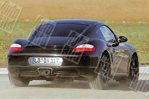 AUTO BILD-Vorschau Porsche