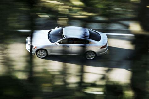 Katzensprung: Jaguar (hier der XF) erreichte bei der Kundenzufriedenheit 2007 Rang 2.
