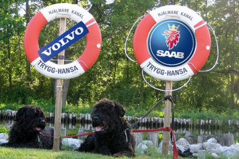Zwei Hunde und ein Rettungsring: Volvo und Saab benötigen Staatshilfe.