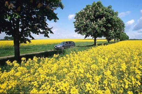 Biokraftstoff wird teurer