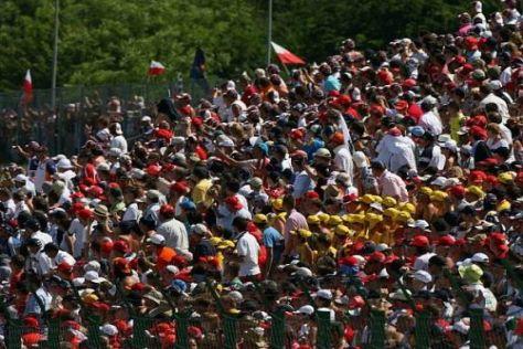 Die FIA hat das neue Wertungssystem notgedrungen auf 2010 verschoben
