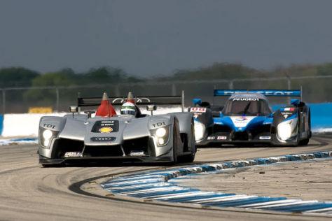 ALMS Sebring 2009, Audi R15 (Allen McNish) vor Peugeot 908 (Franck Montagny)
