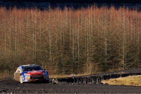 Geht es nach der ISC, soll die Rallye GB Wales nach diesem Jahr verlassen