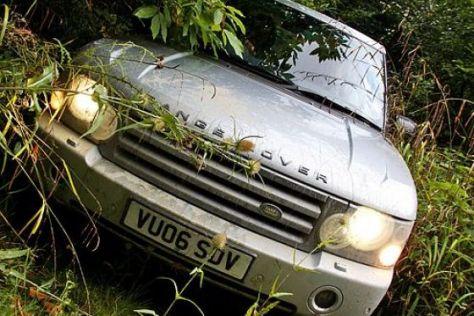 Range Rover in der Botanik.
