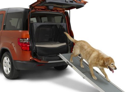 Honda Dog Friendly Element Concept