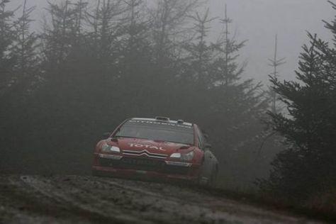 Momentan herrscht in den walisischen Wäldern noch kein typisches Rallye-Wetter