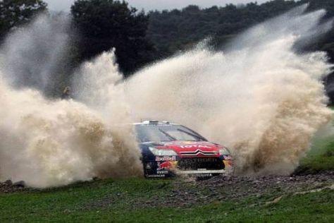 Sébastien Loeb hat beste Chancen, seinen sechsten Weltmeistertitel zu holen