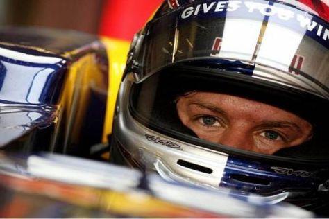 Eine Maus im Cockpit würde Sebastian Vettel ordentlich unter Stress setzen...