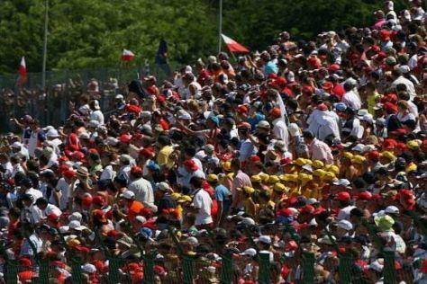 In Elroy wird den US-amerikanischen Fans ab 2012 ein Formel-1-Grand-Prix gezeigt