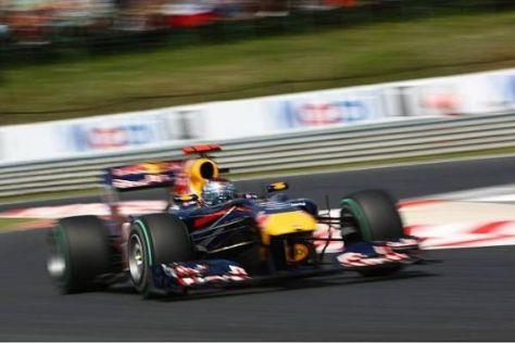 Laut David Coulthard ist der RB6 von Red Bull der Favorit für den Saisonendspurt