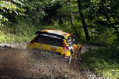 Die engen Waldwege in Japan sind für Rallyes bestens geeignet