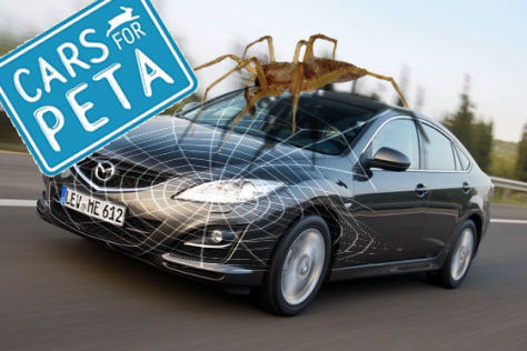 Montage Cars for PETA