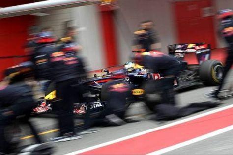 Gut, besser, Red Bull: Sebastian Vettel ist für viele einer der WM-Favoriten