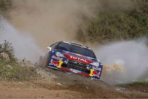Die Hersteller wollen die WRC-Action den Fans live im Internet näher bringen