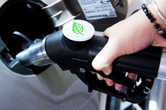 Die Wirtschaft drückt aufs Gas