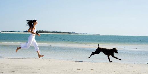 frau-mit-hund-am-strand
