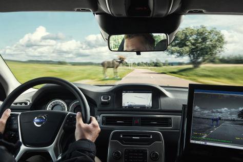 Volvo-Test mit Notbremsassistent mit Tier-Erkennung