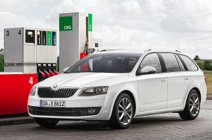 Das kostet der Erdgas-Octavia