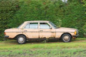 Beiger Benz mit Baum